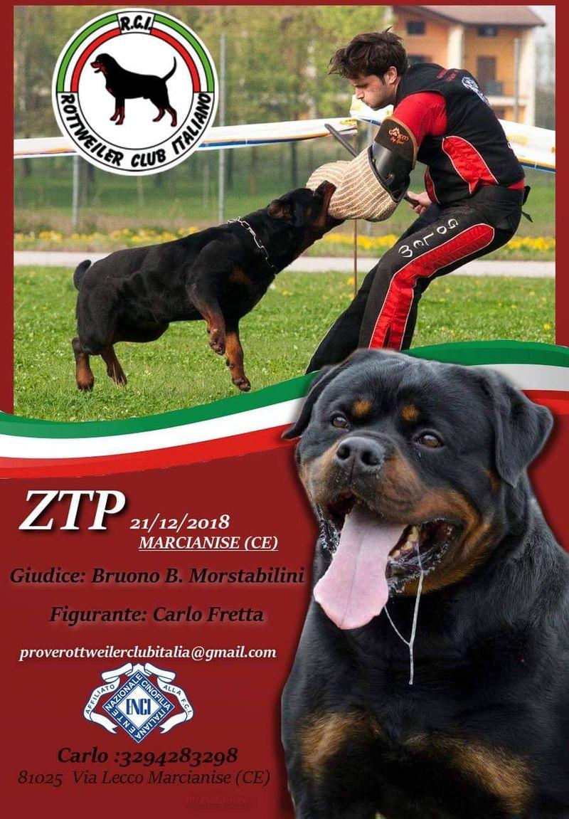 ZTP Marcianise1