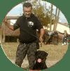 Allevamento Rottweiler - Buoso da Dovara