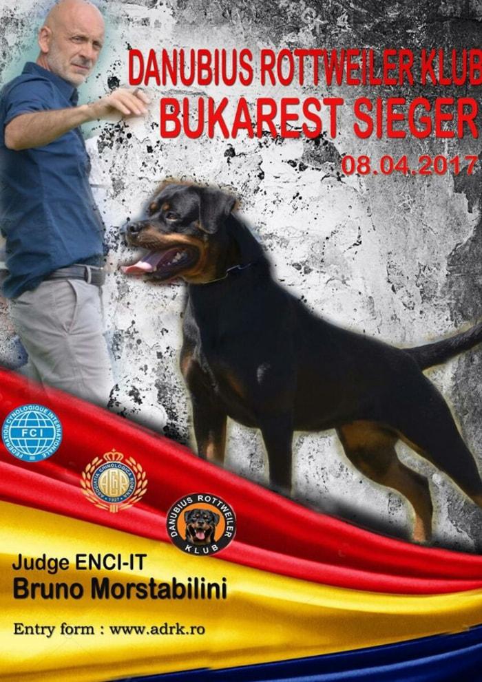 giudice_bruno_b_morstabilini_50
